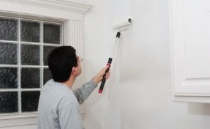 Apply the primer on the wall